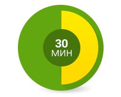 Уред за здравословно готвене Zephyr с таймер до 30 минути